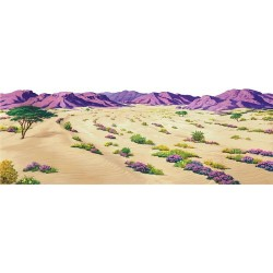 Decor Desert Mare